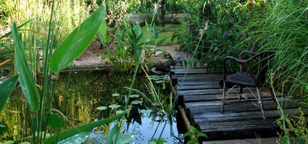 Bassins d 39 ornement de jardin bouches du rh ne vert et sens - Plantes bassin de lagunage aixen provence ...