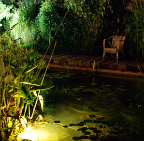 Clairage de jardin entretien et r novation de piscine et jardin aix en provence vert et sens - Plantes bassin de lagunage aixen provence ...