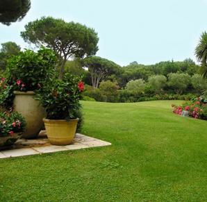 Espaces verts entretien et r novation de piscine et for Cout entretien jardin